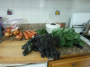 Veggies ready to be chopped!