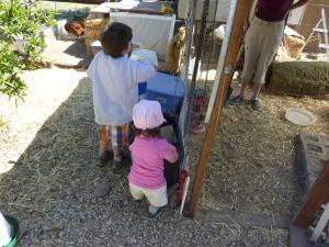 Taking care of Grandma and Grandpa's chickens!